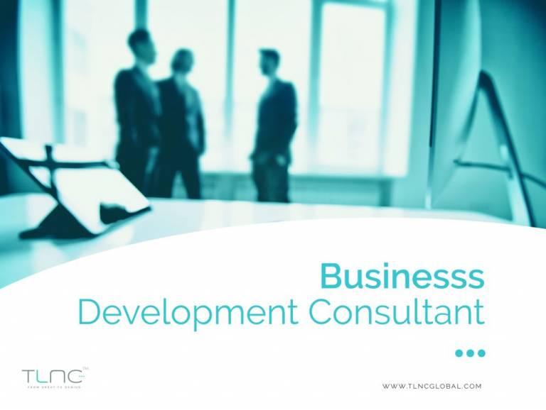 Business Develpment Consultant praca