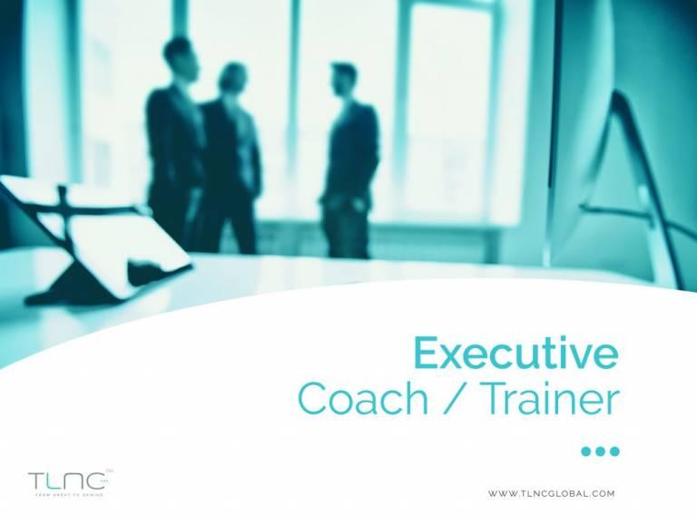 Executive Coach / Trainer job